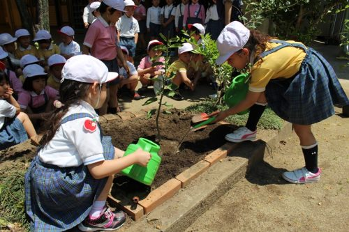 160516槙塚幼稚園植樹祭3