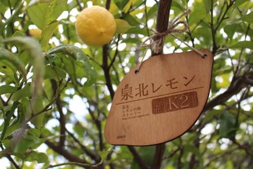 泉北レモンプレートK Ver.2