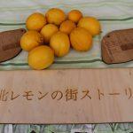 レモンプレートVer.3&レモン