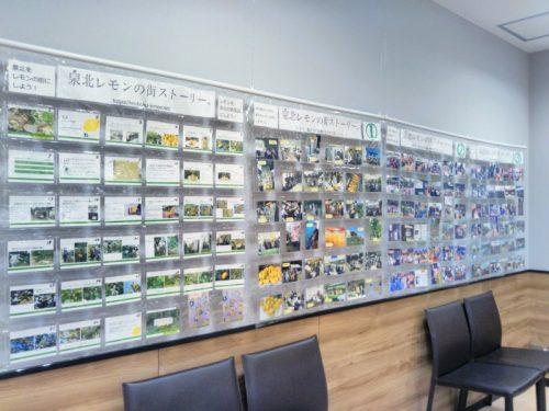 泉北レモンの街ストーリーの活動写真