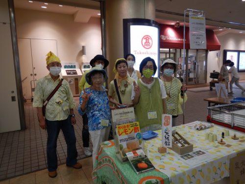200808泉北タカシマヤレモン苗木販売会